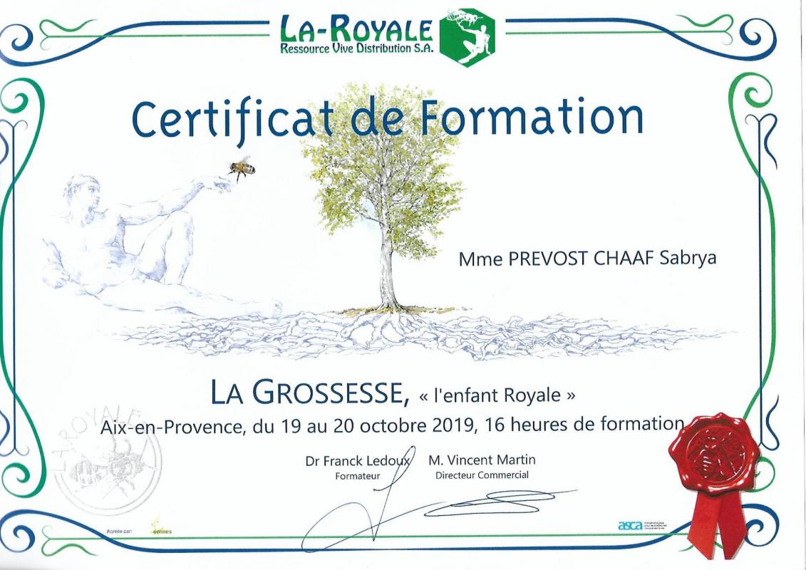 Certificat de formation la grossesse sabrya chaaf 2