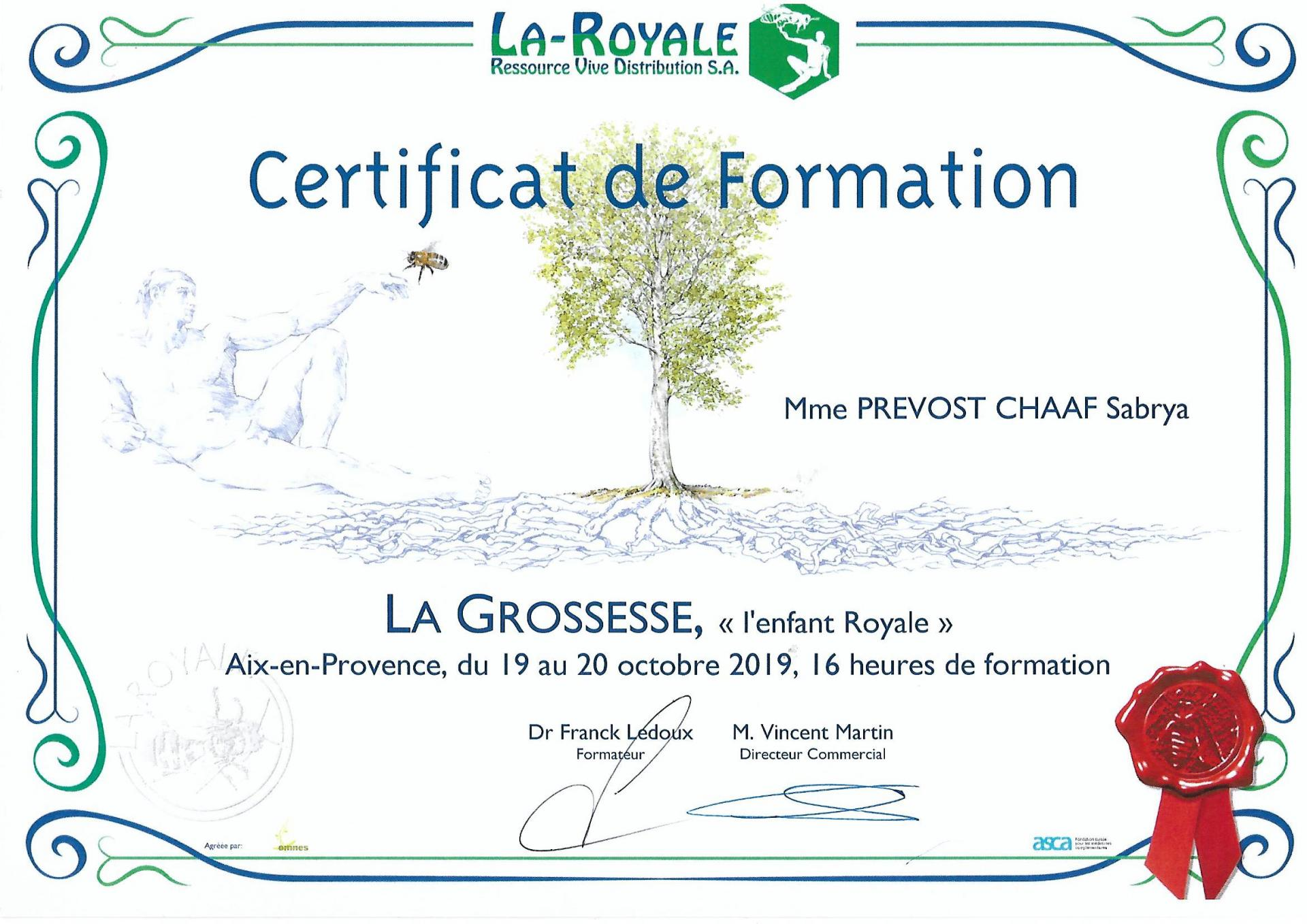 Certificat de formation grossesse sabrya chaaf naturopathe