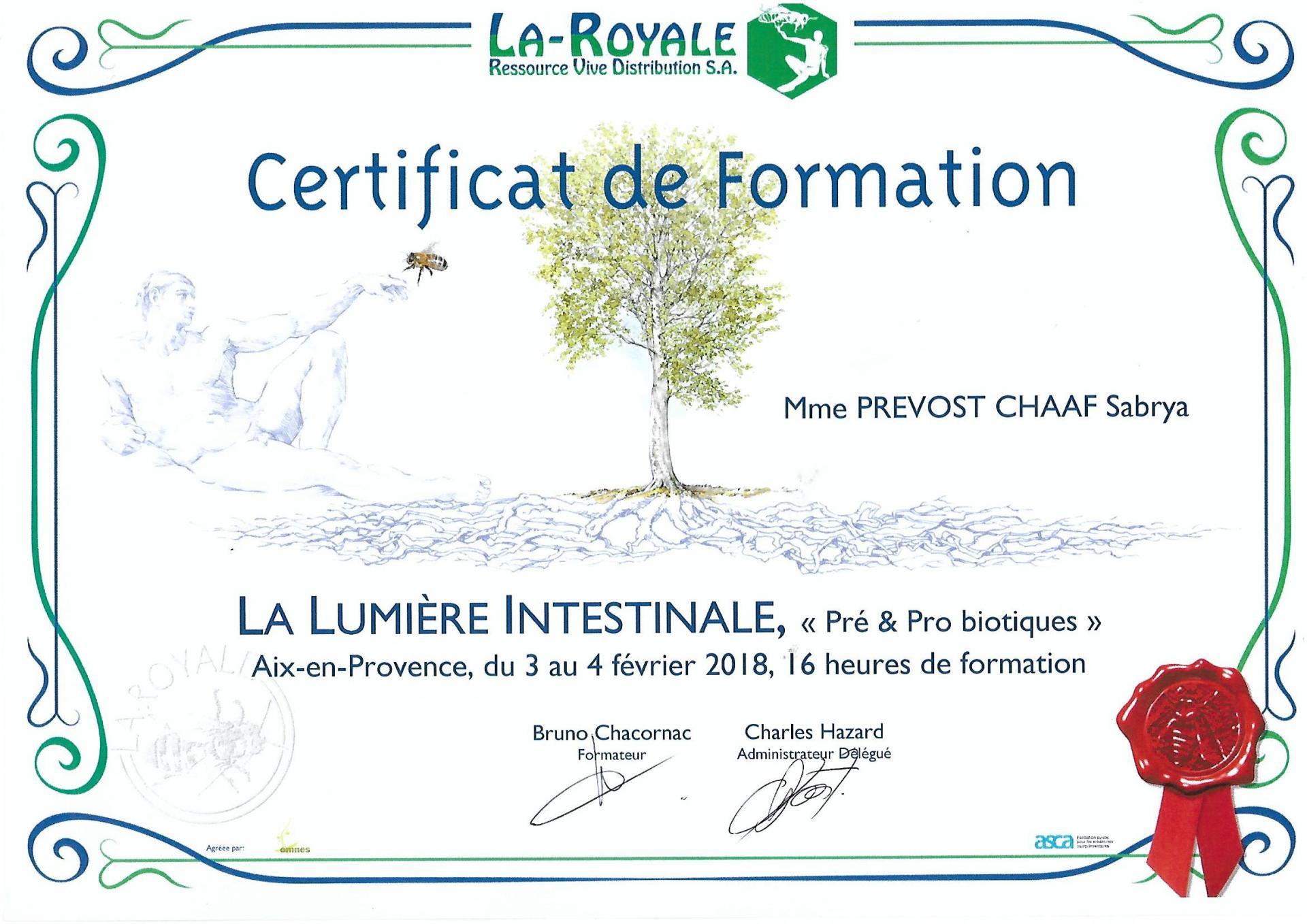 Certificat de formation intestin sabrya chaaf naturopathe