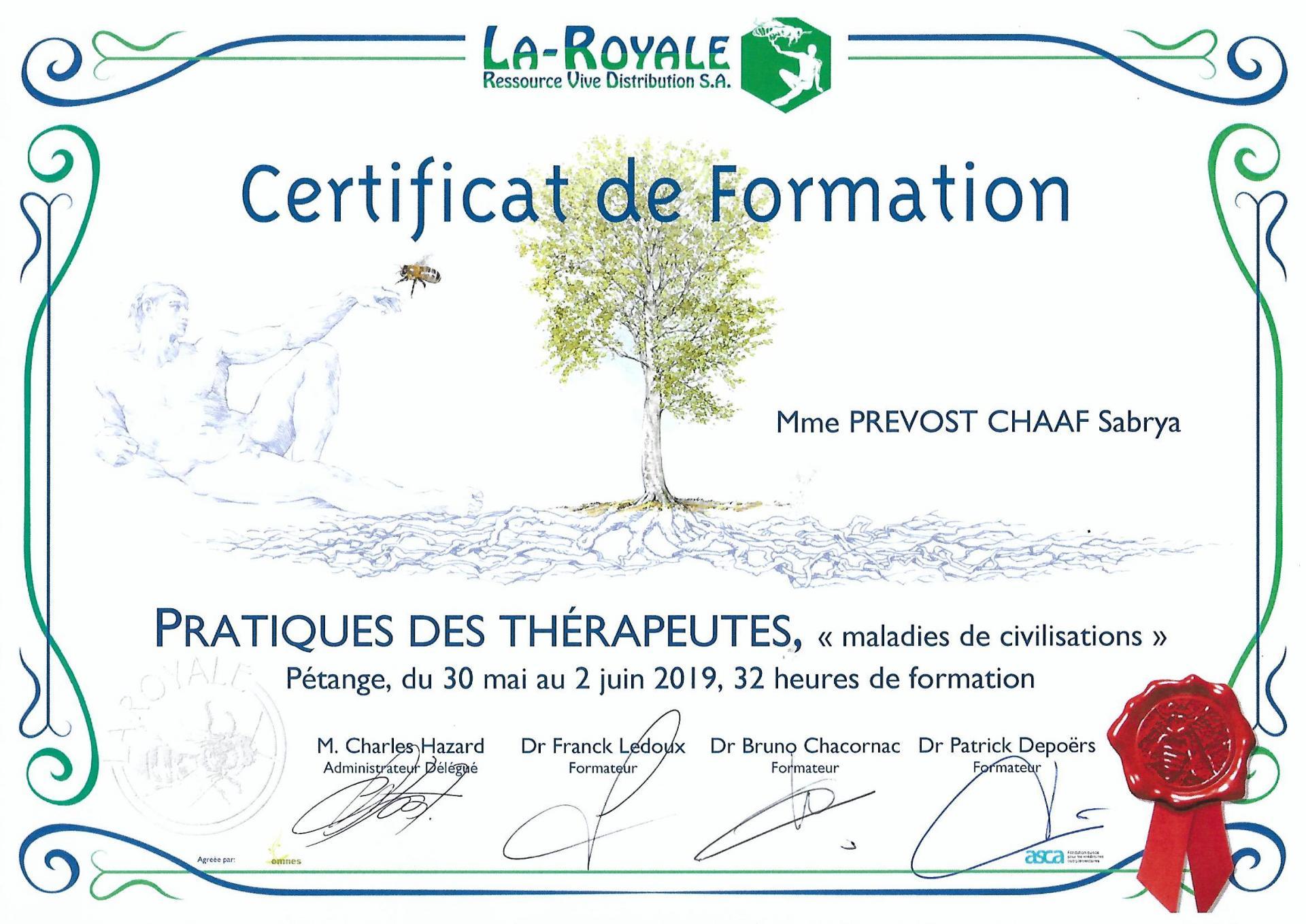 Certificat de formation maladies de la civilisation sabrya chaaf naturopathe