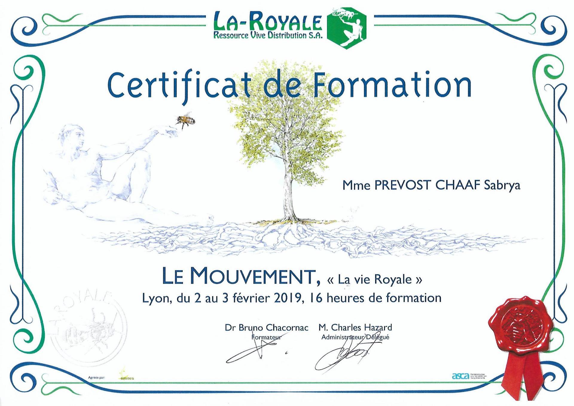 Certificat de formation sur le mouvement sabrya chaaf